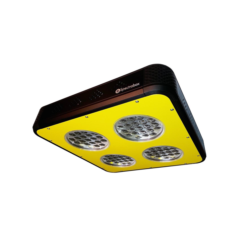 Groei led lamp kopen online internetwinkel - Draadloze bloei lamp ...